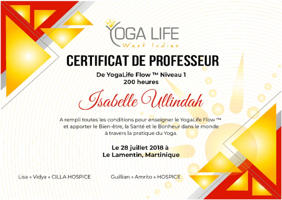 Formation de professeur YogaLife Flow Martinique Centre Yoga Life West Indies Lamentin Schoelcher
